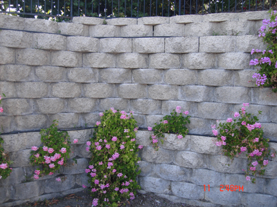 Retaining Wall Gallery Picture 2