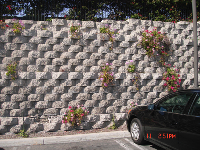 Retaining Wall Gallery Picture 5