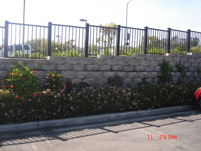 Retaining Wall Gallery Picture